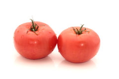Tomatoes Royalty Free Stock Photo