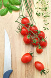 Tomatoes and herbs. Cherry tomatoes and herbs on the wood background Royalty Free Stock Photography
