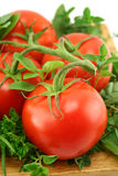 Tomatoes And Herbs Stock Photo