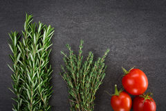 Tomatoes and Herbs Royalty Free Stock Photos