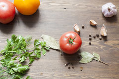 Tomatoes and herbs. Tomatoes, fresh herbs and spices stock image