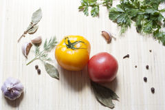 Tomatoes and herbs. Tomatoes, fresh herbs and spices royalty free stock photos