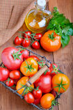 Tomatoes with herbs  and oil Stock Image