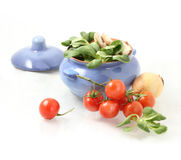 tomatoes, herbs  and pot Stock Photography