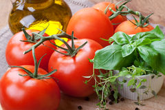 Tomatoes and herbs, still life. Fresh tomatoes, basil, thyme and olive- still life Stock Photography