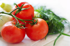 Tomatoes and herbs  on a tablecloth. Composition of vegetables tomatoes,dill, anion zucchini Stock Images