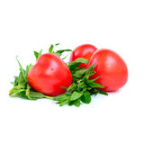 Tomatoes with hyssop on white stock images