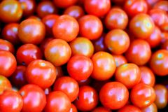 Tomatoes. Image of tasty tomatoes with white background Stock Photos