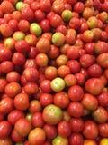 Tomatoes Image Stock Image