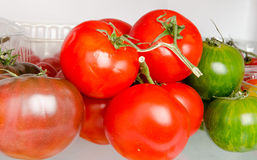 Tomatoes inside a refrigerator Stock Photography