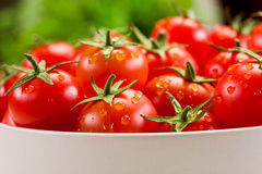 Tomatoes inside white bowl Royalty Free Stock Images