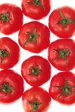 Tomatoes, isolated. Stock Image