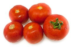 Tomatoes isolated Royalty Free Stock Images
