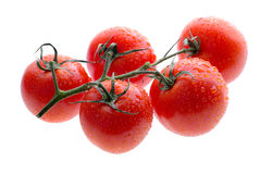 Tomatoes isolated Stock Photo