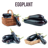 Tomatoes isolated. Eggplant isolated on white background stock photo