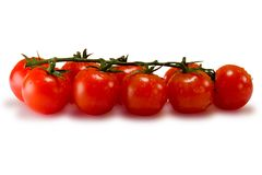 Free Tomatoes Isolated On White Royalty Free Stock Photos - 439868