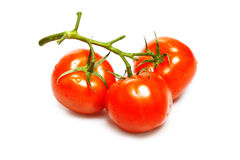 Tomatoes isolated on white Stock Photo