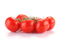 Tomatoes isolated on white. Tomatoes with visible drops of water isolated on white background Stock Photos
