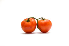 Tomatoes isolated on white Stock Photography