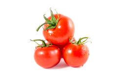 Tomatoes. Isolated on a white background Royalty Free Stock Photos