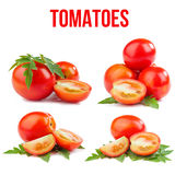 Tomatoes isolated. On white background Royalty Free Stock Images