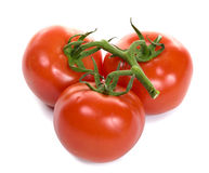 Tomatoes isolated on white Royalty Free Stock Photos
