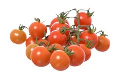 Tomatoes isolated on a white background Royalty Free Stock Photography