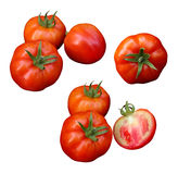 Tomatoes isolated on white background with clipping path Stock Photography