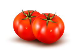 Tomatoes isolated on on white background. Royalty Free Stock Image