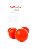 tomatoes isolated on white background with a sample text Stock Images