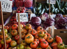 Tomatoes in italy Stock Image