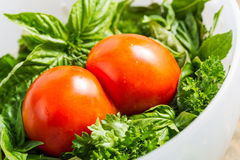 Tomatoes Joined Together Stock Image