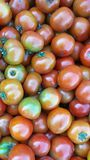 Tomatoes. Juice red fresh tomatoes Royalty Free Stock Image