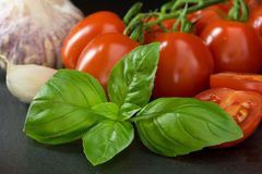 Tomatoes with a leaf of basil, garlic, clove of garlic and slice Stock Images