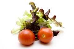 Tomatoes with leafy vegetables Royalty Free Stock Image
