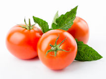 Tomatoes with leaves Royalty Free Stock Photography