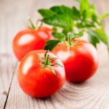 Tomatoes with leaves Stock Photo