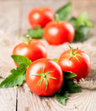 Tomatoes with leaves Royalty Free Stock Photos