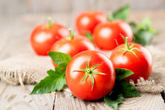 Tomatoes with leaves Stock Images