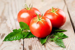 Tomatoes with leaves Stock Photos