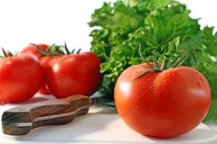Tomatoes with lettuce Stock Photos