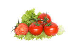 Tomatoes On Lettuce Stock Photo
