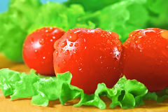 Tomatoes and lettuce. Cherry tomatoes and lettuce on a cutting board royalty free stock photos