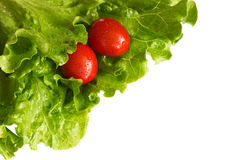 Tomatoes in lettuce leaves Royalty Free Stock Images