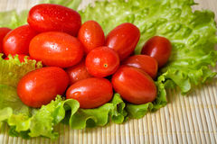 Tomatoes and lettuce Stock Photography