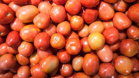 Tomatoes. At the local market Royalty Free Stock Image