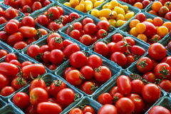 Tomatoes at Local Market Royalty Free Stock Photography