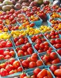 Tomatoes at Local Market Royalty Free Stock Photos