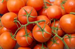 Red tomatoes at the supermarket - Solanum lycopersicum royalty free stock photos