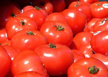 Tomatoes at the market. A group of picked tomatoes in a box at a market stock photo